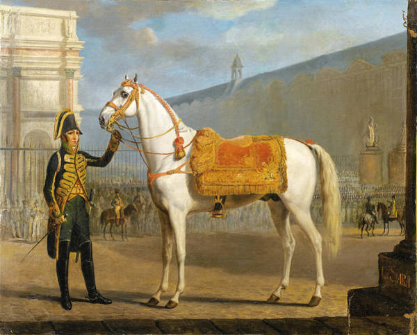 Sara Painting - Sara. Napoleon's Horse by Alexandre Ivanovitch Sauerweid