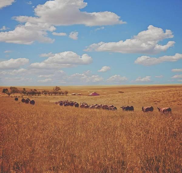 Photograph - Sarah's View by Amanda Smith