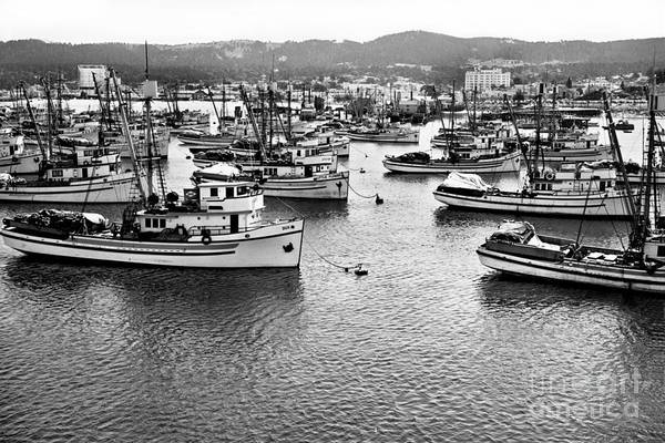 Photograph - Sardine Purse Seiners Fishing Fleet At Anchor, Monterey Bay Aug. 1946 by California Views Archives Mr Pat Hathaway Archives