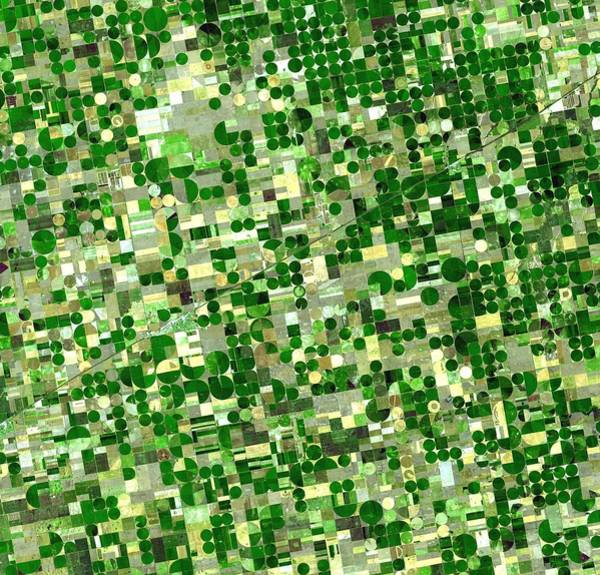 Photograph - Satellite Image Of Crops Growing In Kansas United States by Artistic Panda