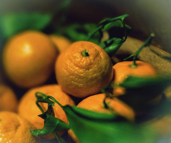 Photograph - Satsumas by Nisah Cheatham