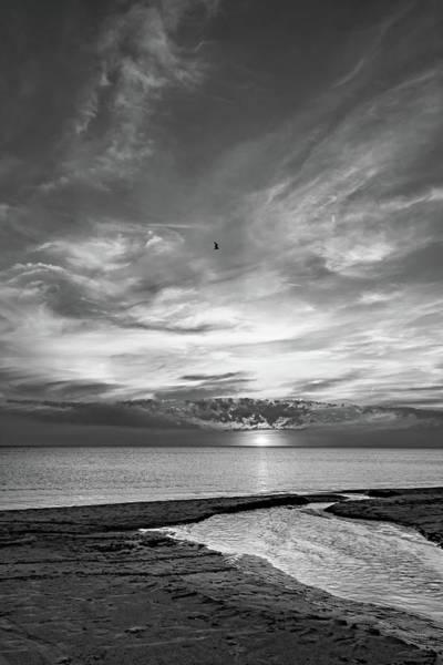 Sauble Beach Photograph - Sauble Beach Sunset 6 Bw by Steve Harrington