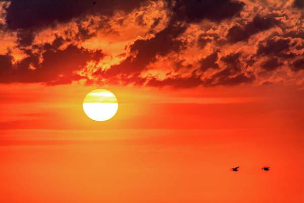 Sauble Beach Photograph - Sauble Beach Sunset - Pairing Up 2 by Steve Harrington