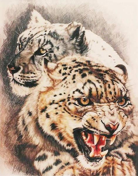 Drawing - Savage Perfection by Barbara Keith