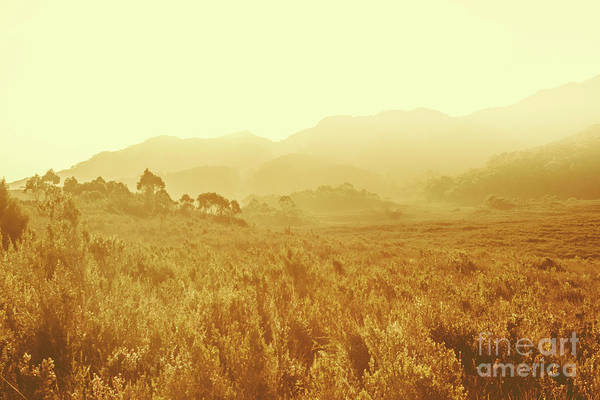 Grassland Photograph - Savannah Esque by Jorgo Photography - Wall Art Gallery