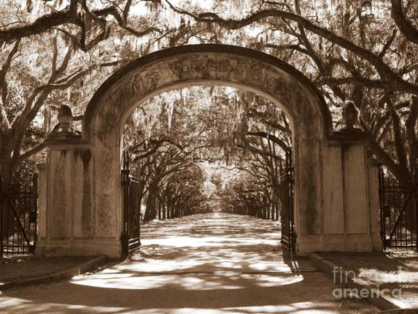 Photograph - Savannaha Sepia - Wormsloe Plantation Gate by Carol Groenen