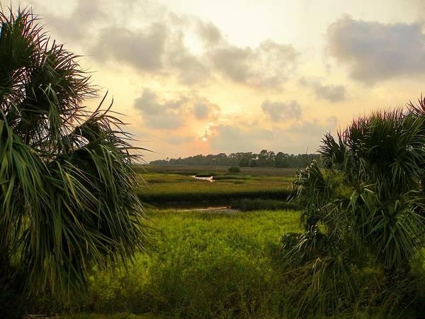 Sawgrass Digital Art - Saw Grass Sunset by Sheri McLeroy
