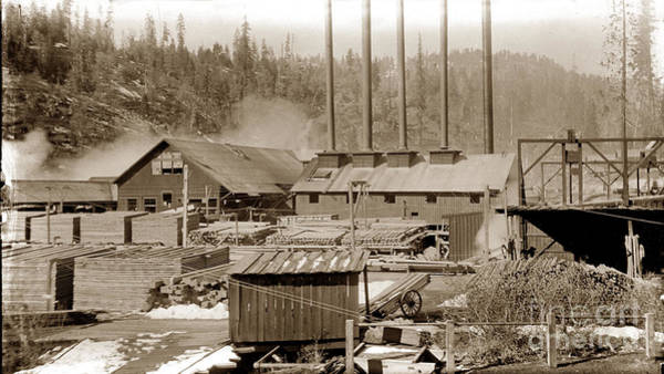 Photograph - Saw Mill And Milled Lumber Circa 1900 by California Views Archives Mr Pat Hathaway Archives