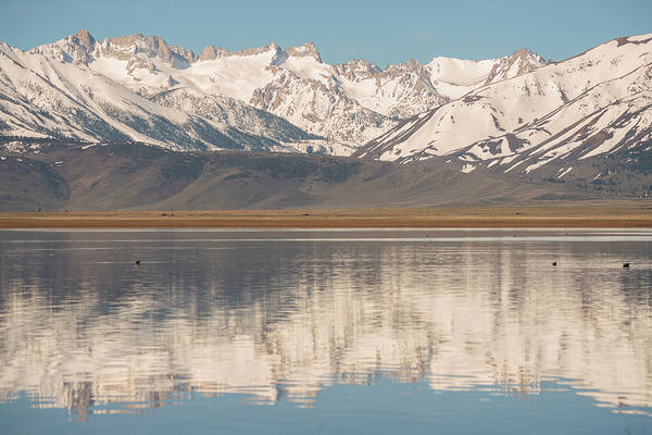 Photograph - Sawtooth Ridge Reflected by Loree Johnson