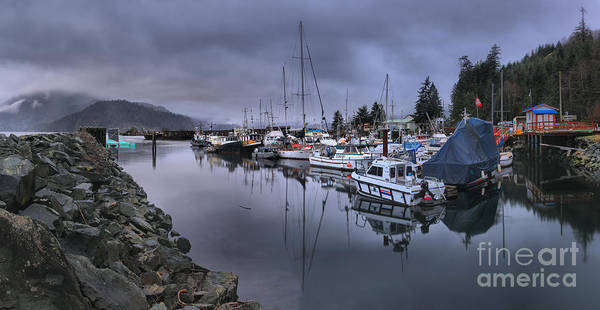 Photograph - Sayward British Columbia Marina by Adam Jewell