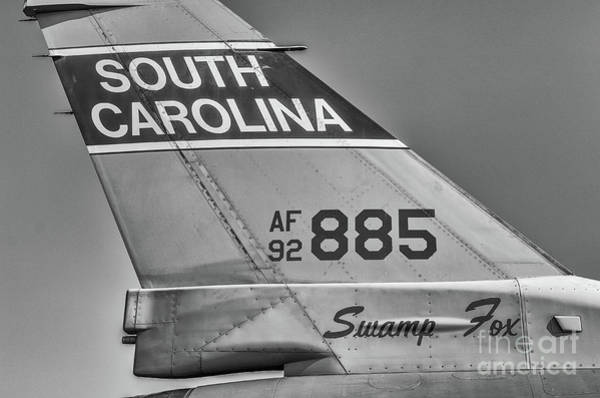 Photograph - Sc Swamp Fox by Dale Powell