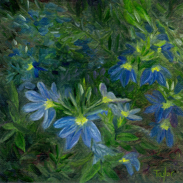 Painting - Scaevola by FT McKinstry