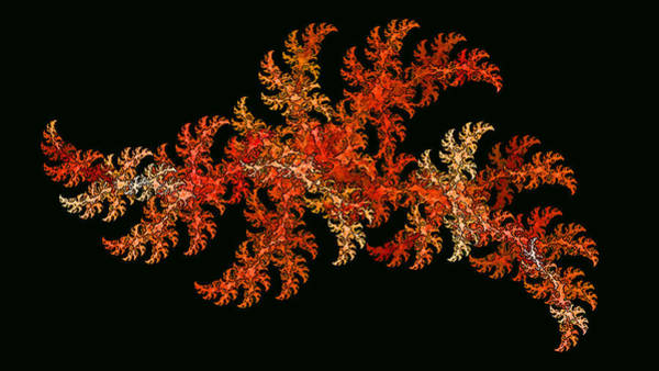 Digital Art - Scallywagg by Doug Morgan