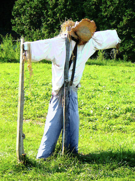 Photograph - Scarecrow by Susan Savad