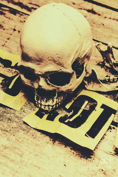 Lab Photograph - Scary Human Skull by Jorgo Photography - Wall Art Gallery