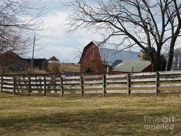 Photograph - Scene On The Farm by Donald C Morgan