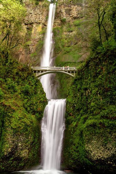 Photograph - Scenic Multnomah Falls In Oregon by Teri Virbickis