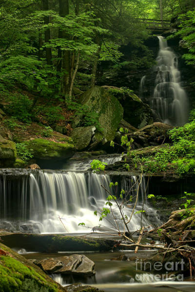 Triple Falls Photograph - Scenic Ozone Falls by Adam Jewell
