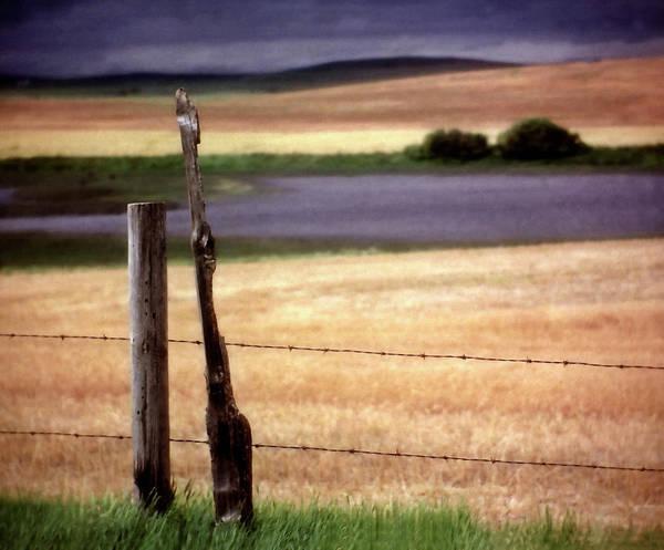 Prairie View Digital Art - Scenic Saskatchewan Landscape by Mark Duffy