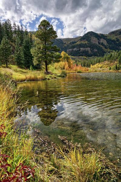 Photograph - Scenic Serenity by Leda Robertson