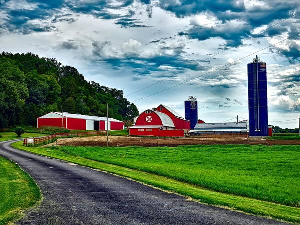 Feedlot Photograph - Scenic Wisconsin by Mountain Dreams