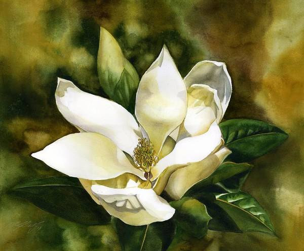 Painting - Scent Of The Magnolia by Alfred Ng