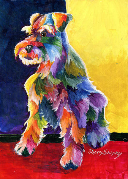 Painting - Schnauzer 3 by Sherry Shipley