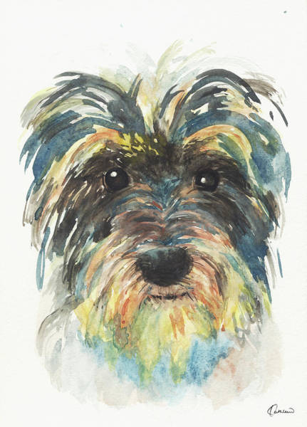 Wall Art - Painting - Crazy Schnauzer by Kathleen Wong