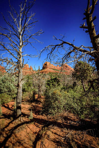 Wall Art - Photograph - Schnebly Hill Road 13 - Sedona Arizona by Jon Berghoff