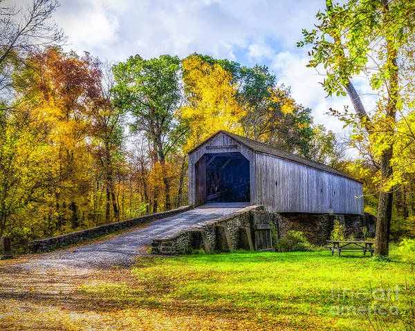 Photograph - Schofield Ford Bridge by Nick Zelinsky