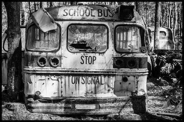 Photograph - School Bus by Matthew Pace