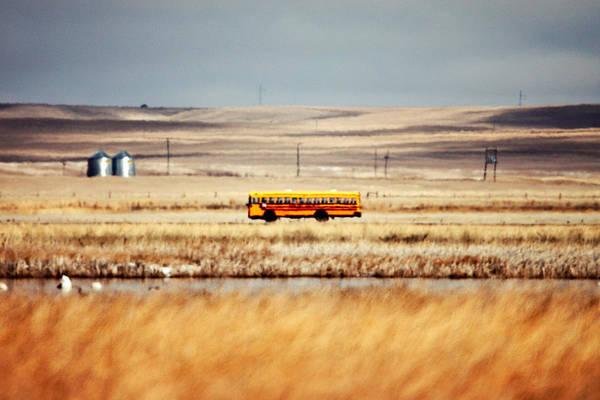 Photograph - School Daze by Todd Klassy