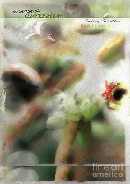 Photograph - School Of Curiosity 10 by Vicki Ferrari