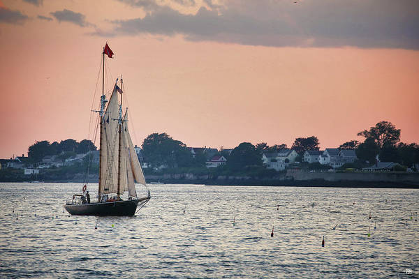 Photograph - Schooner Alert by John Meader