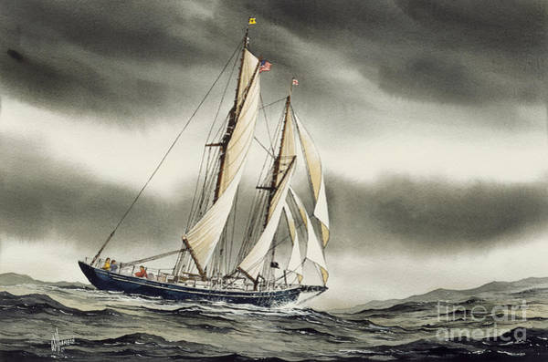 Blackfish Wall Art - Painting - Schooner Blackfish by James Williamson