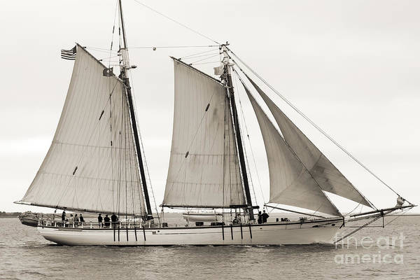 Wall Art - Photograph - Schooner Harvey Gamage Of Islesboro Maine by Dustin K Ryan