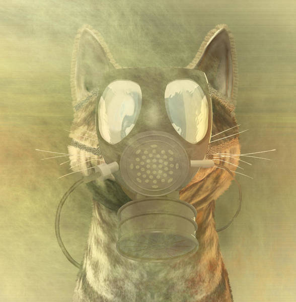 Quantum Digital Art - Schrodinger Underestimates The Cat. by Carol and Mike Werner