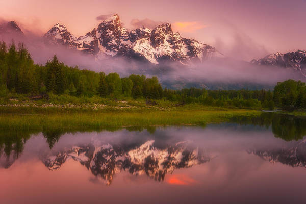 Photograph - Schwabacher Sweets by Darren  White