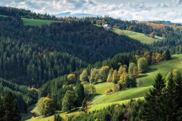 Photograph - Schwarzwald Black Forest Landscape Germany by Matthias Hauser
