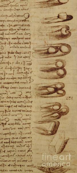Wall Art - Drawing - Scientific Diagrams by Leonardo Da Vinci