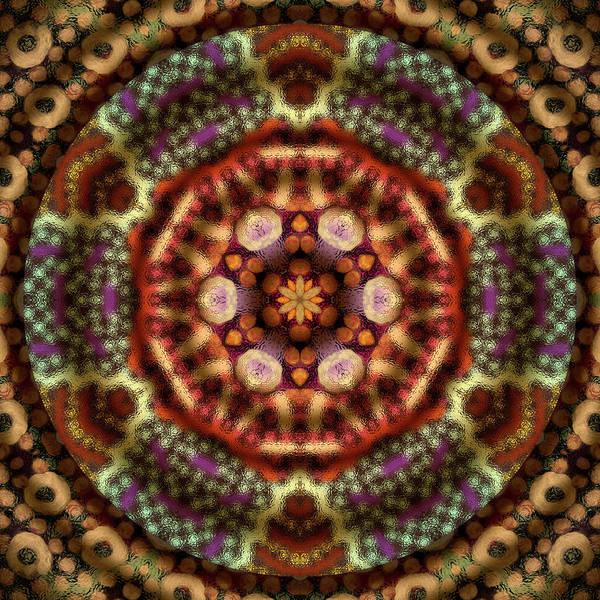 Digital Art - Scintillation by Becky Titus