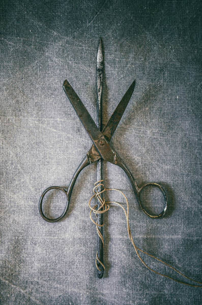 Cord Wall Art - Photograph - Scissors And Needle by Carlos Caetano
