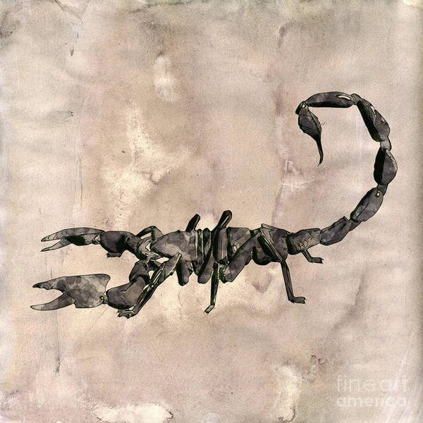 Danger Digital Art - Scorpion Pop Art By Mary Bassett by Mary Bassett