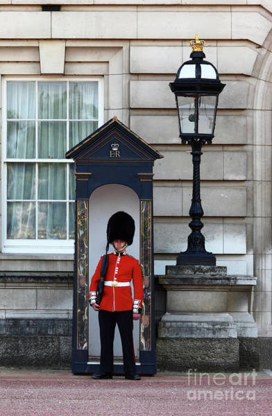 Sentry Box Photograph - Scots Guard Buckingham Palace by James Brunker