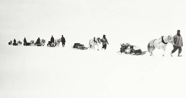 Marching Photograph - Scott Of The Antarctic by Robert Falcon Scott