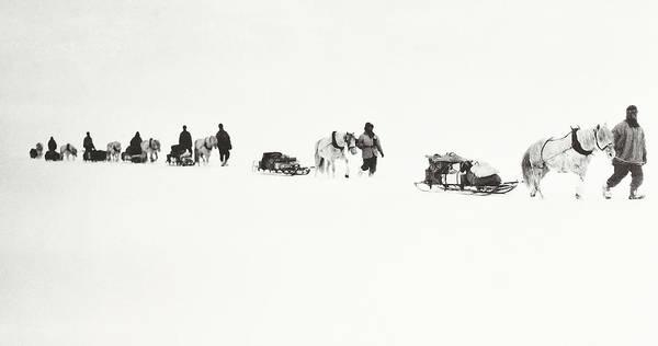 Ponies Photograph - Scott Of The Antarctic by Robert Falcon Scott