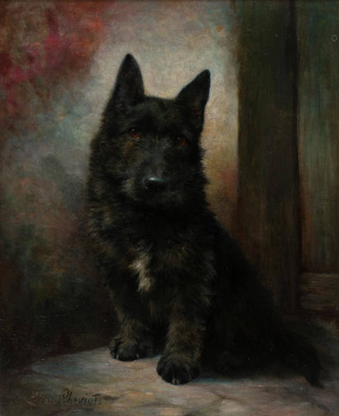 Wall Art - Painting - Scottie by Lilian Cheviot