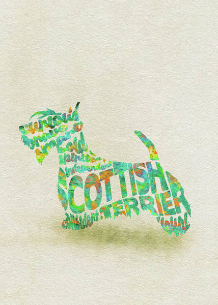 Wall Art - Painting - Scottish Terrier Dog Watercolor Painting / Typographic Art by Inspirowl Design