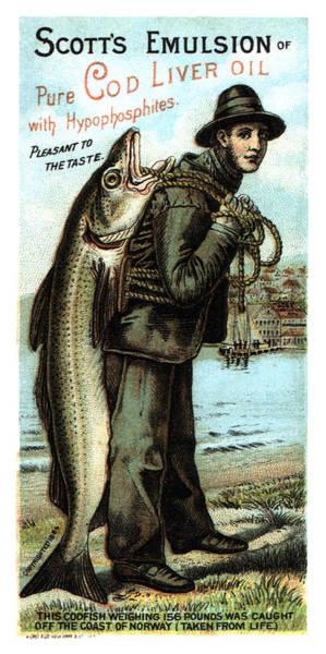 Wall Art - Mixed Media - Scott's Emulsion Of Pure Cod Liver Oil - Vintage Advertising Poster by Studio Grafiikka