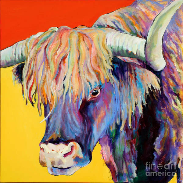 Cows Painting - Scotty by Pat Saunders-White